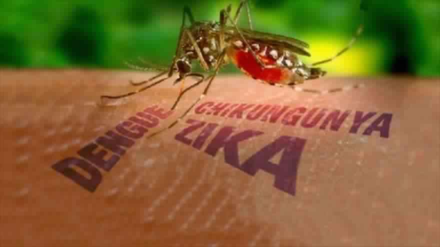 كولومبيا: أكثر من 20 ألف إصابة بفيروس زيكا