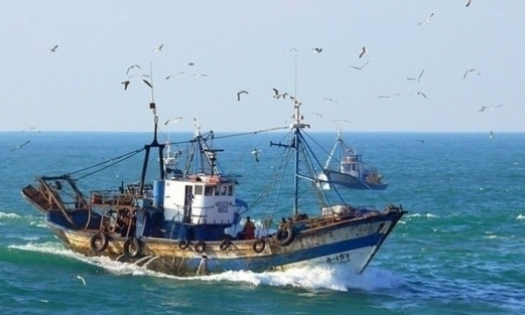 إصطدام سفينة بمركب للصيد البحري