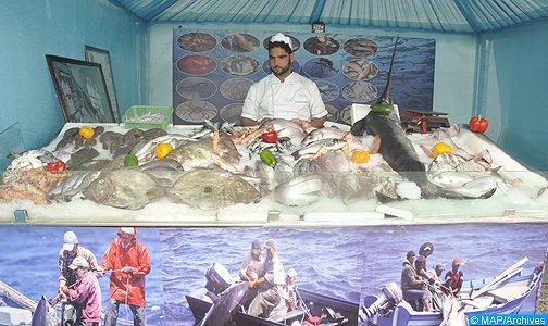قرار أرباب صيد السمك بالداخلة لتوفير الأسماك في حالة الطوارئ