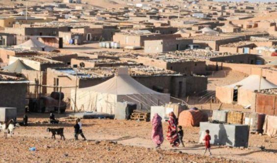 عضو بالكونغرس يدعو الإدارة الأمريكية للحزم لإنهاء النزاع المفتعل حول الصحراء